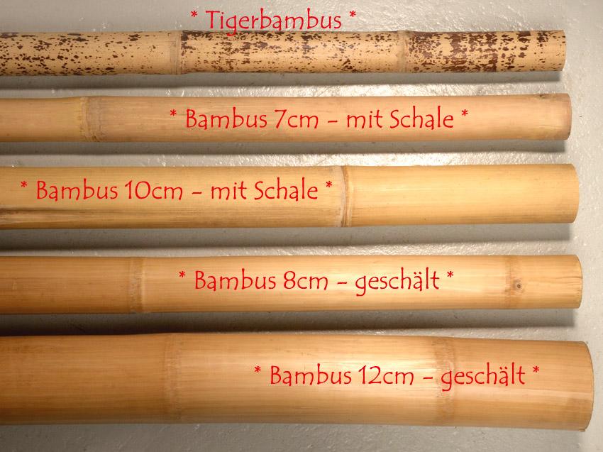 Bambusrohr 9 10x200 natur bambusstange bambus deko bamboo rohr rohre holz wand ebay - Bambusrohre deko ...